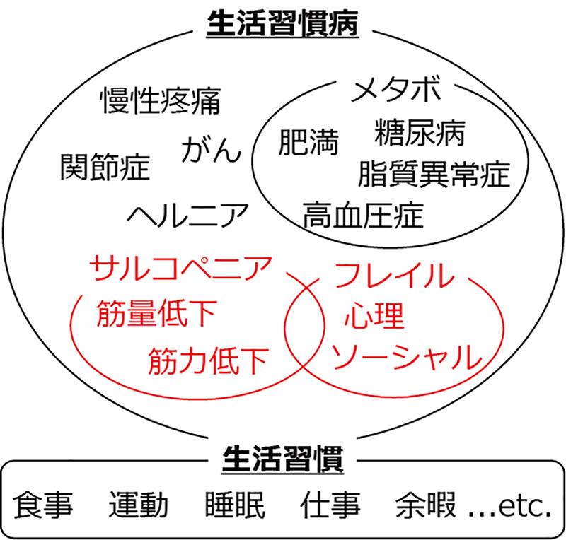 LIFit. の考える「生活習慣病」の模式図
